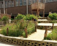 Creatieve speelplaats met wilde bloemen en houten parcours